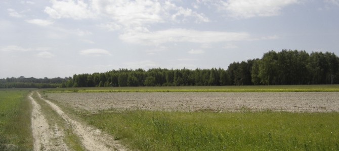 Białobrzegi – Nowy Gózd   28 km     12.VI.2006
