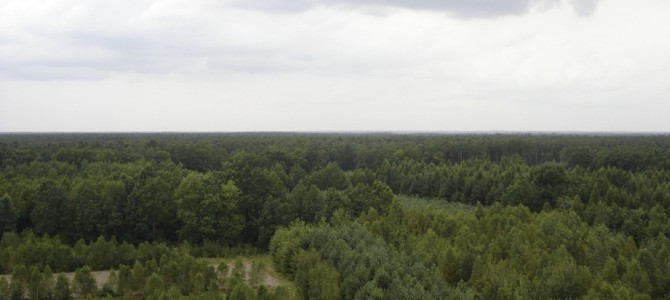 Strzyżyna PKP – Stary Gózd 28 km.  08.VIII.2007