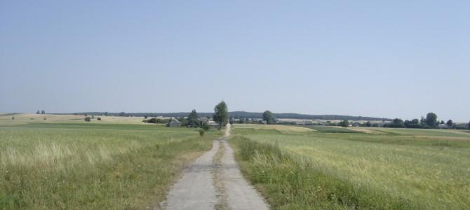 Wierzbica – Skaryszew   20 km     07.VII.2006